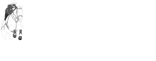 Safron Walden & District Riding Club