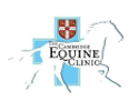 equine-clinic